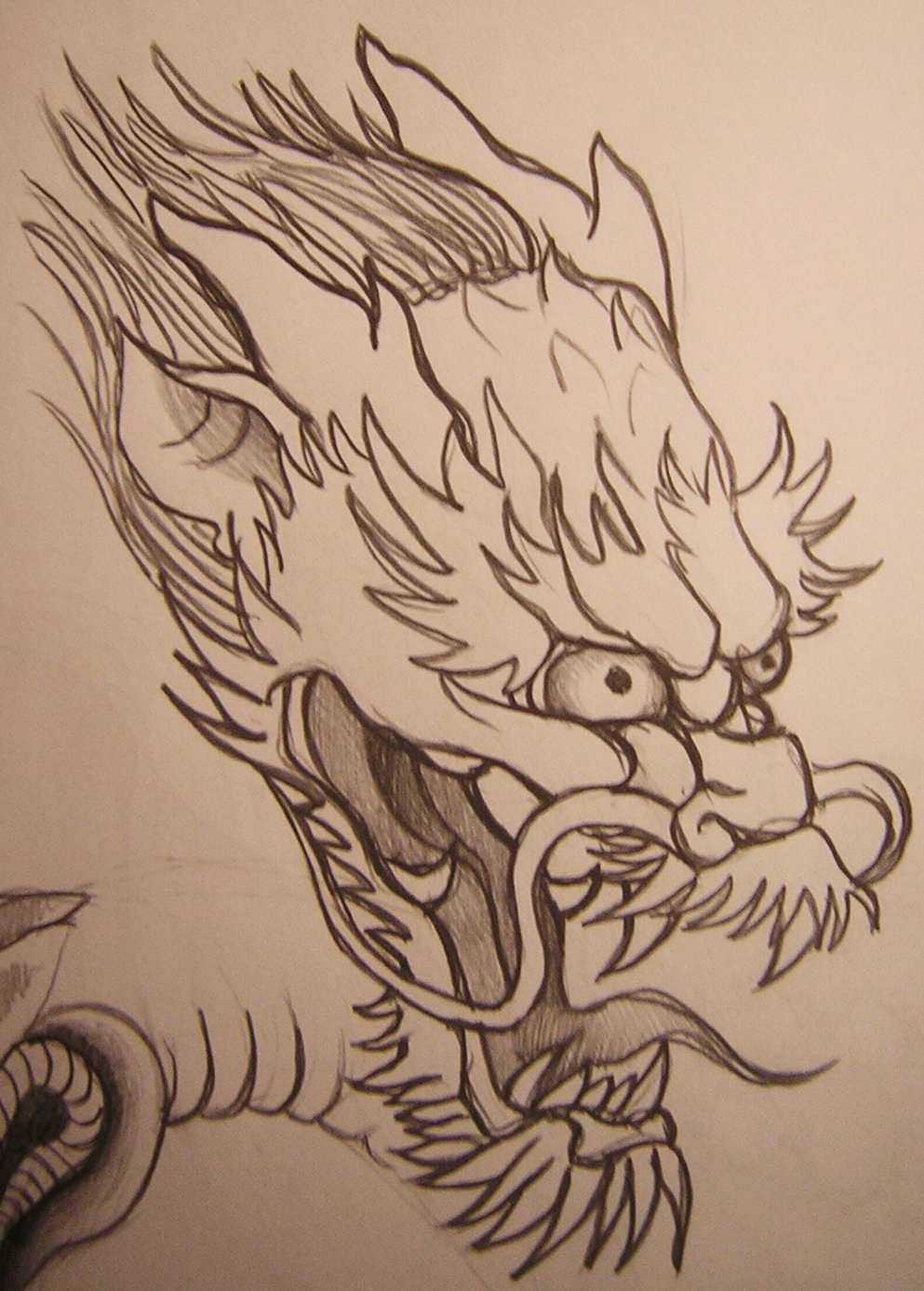 993x1387 Dragon Head By Bonnfire
