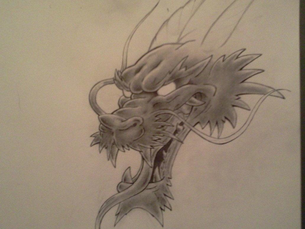 1032x774 Dragon Head Sketch By Darkdreamsj
