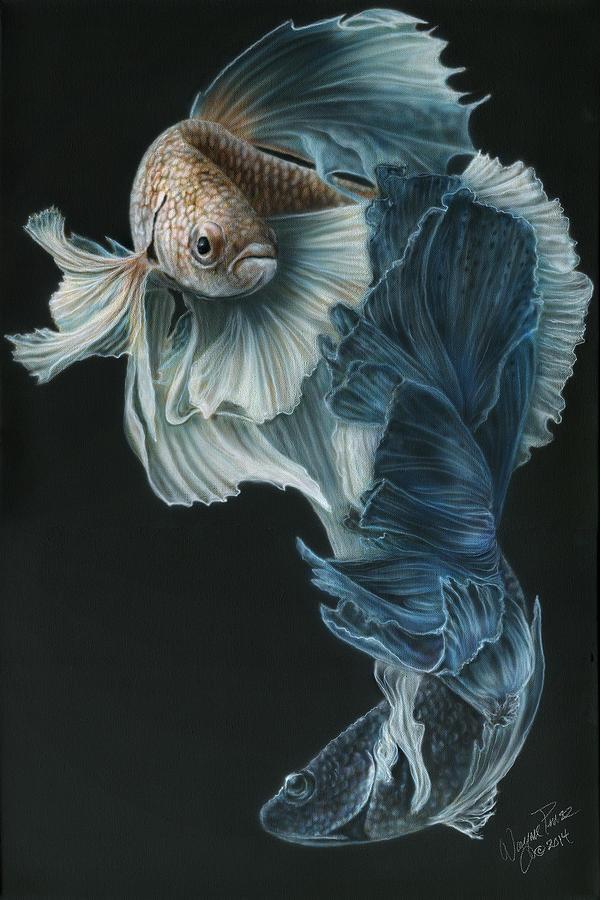 600x900 Siamese Fighting Fish Paintings Fine Art America