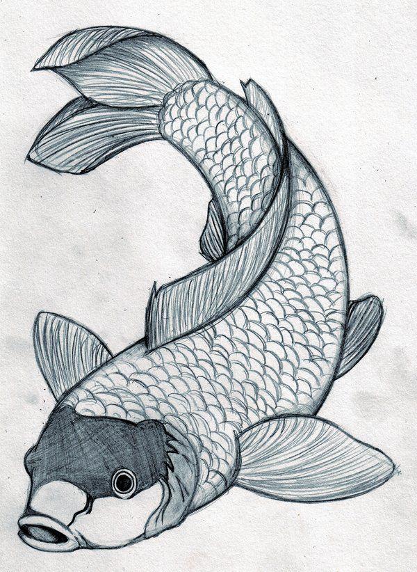 600x822 Fish Designs Free Download Japanese Koi Fish Tattoo Design