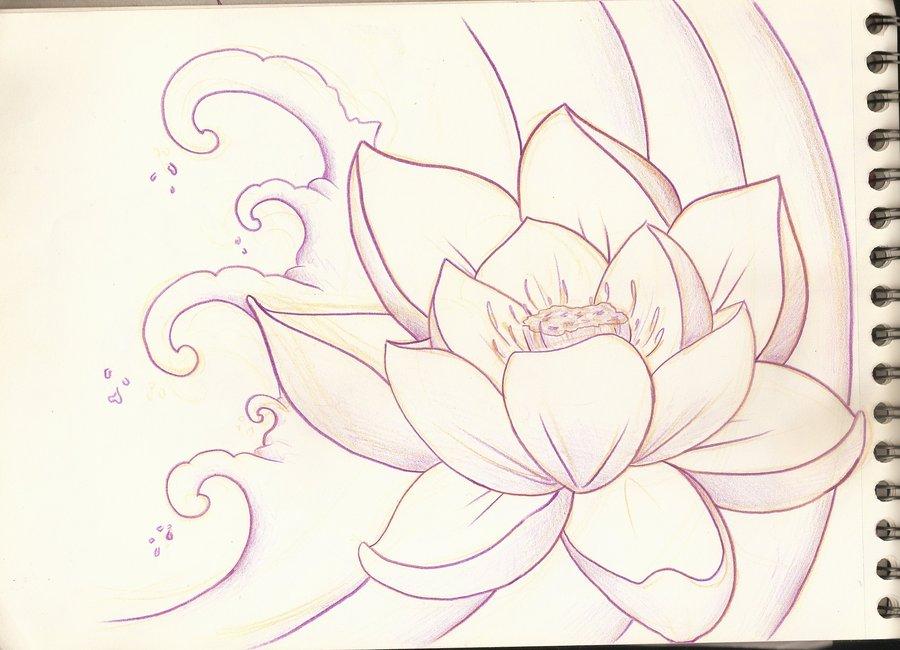900x650 Lotus Sketches Lotus Flower Sketch 1 By Purpleriot