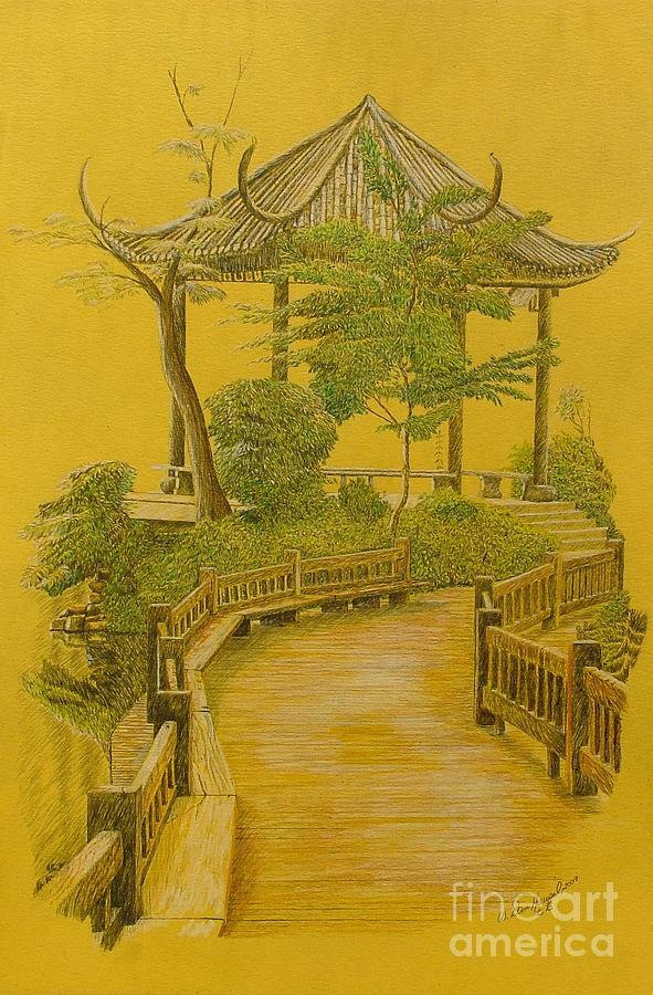591x900 Japanese Garden Drawing By Dan Hausel
