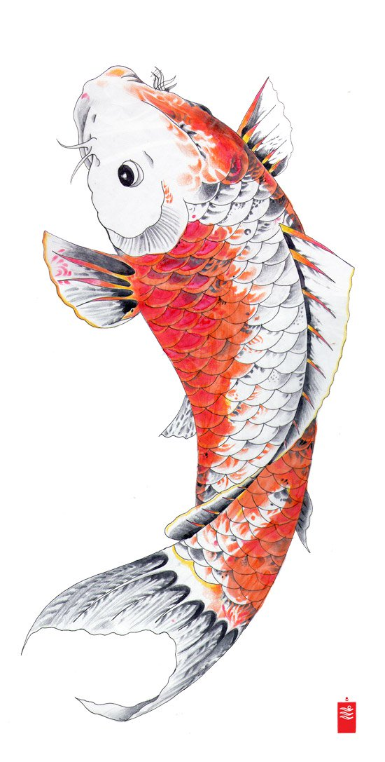 550x1087 The Secret Meaning Behind Japanese Koi Fish Tattoo Numbing Cream