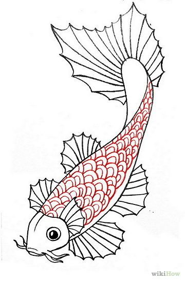 360x549 Draw A Koi Fish Koi, Fish And Draw