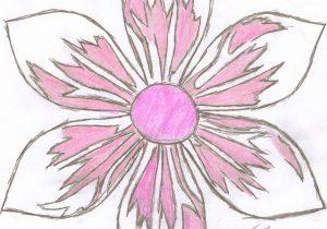 300x210 Japanese Flower Drawings Lotus Flowers Drawings