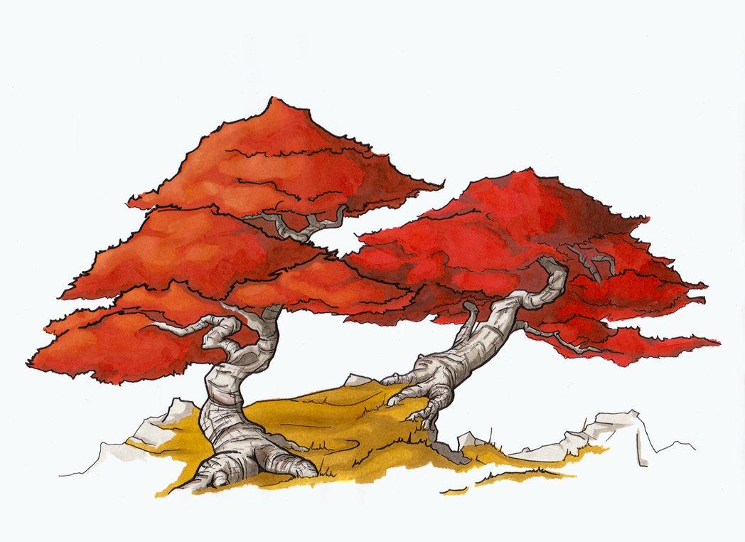 1048x762 Red Japanese Maple By Schwarzpixel