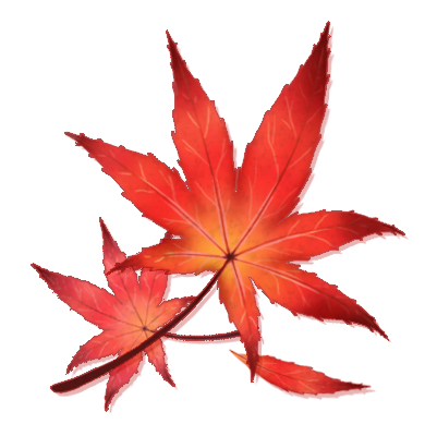 401x400 Japanese Maple Leaf By Shivali Lorekeeper