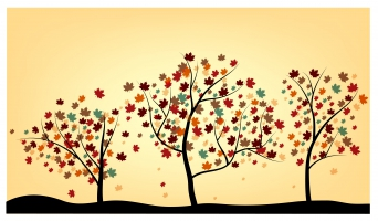 342x200 Japanese Maple Tree Clip Free Vector Graphic Art Free Download