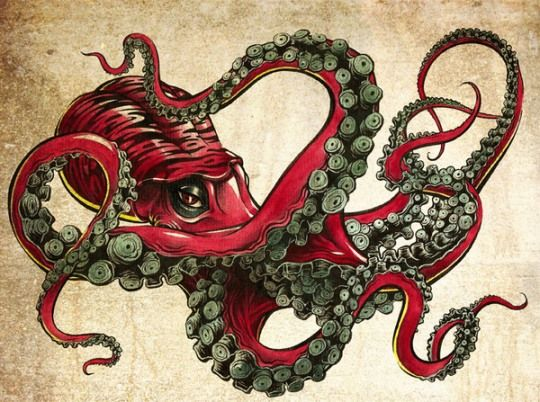 540x402 62 Best Octopus Images On Octopuses, Octopus And Sketches