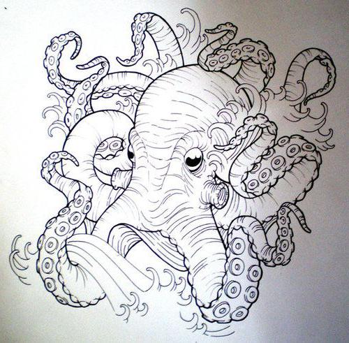 500x491 Octopus Tattoo Sketch Best Tattoo Ideas Gallery
