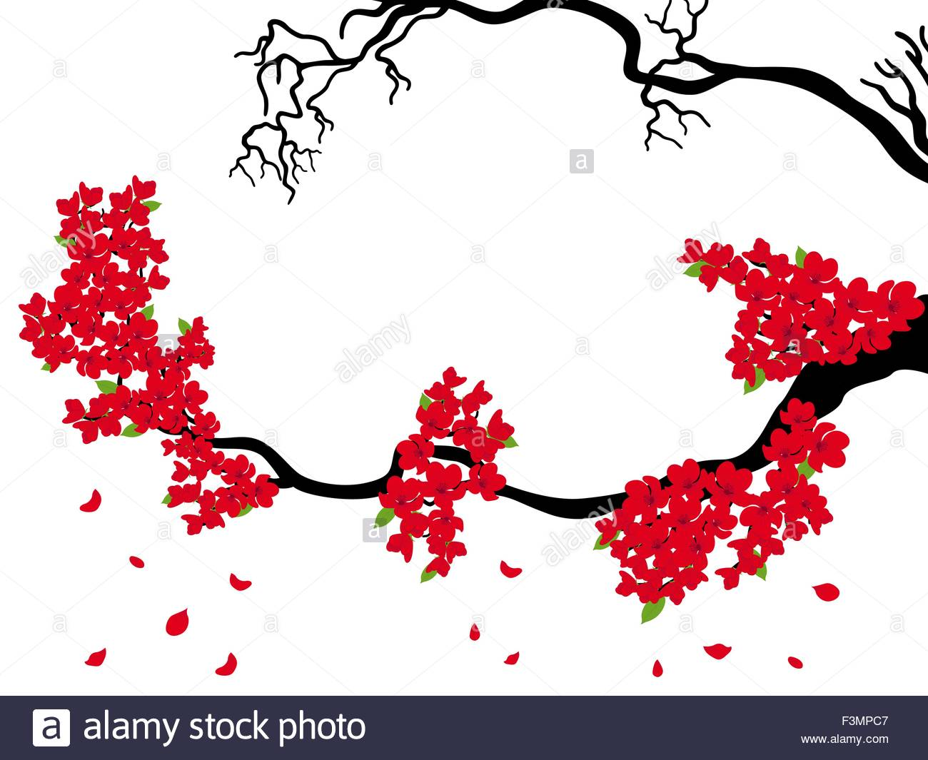 1300x1065 Blooming And Dried Sakura Branches (Japanese Cherry Tree) On