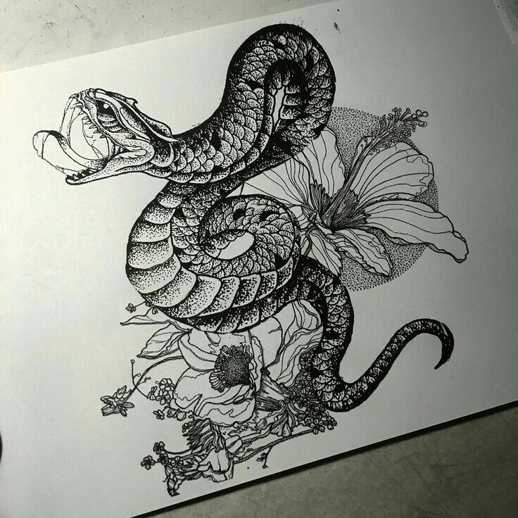 Snake Tattoo Line Drawing : Japanese snake drawing at getdrawings free for