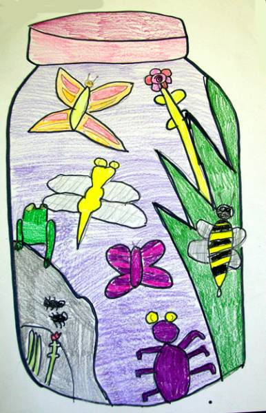 386x600 Drawing Bugs In Jars Lesson Plan Drawing For Kids