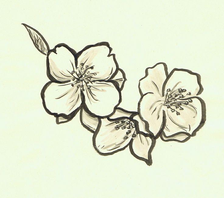 736x652 Jasmine Flower Tattoos On Flower Tattoos Jasmine