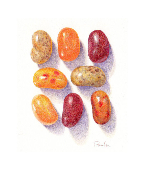570x667 Realistic Colored Pencil Drawings Beans