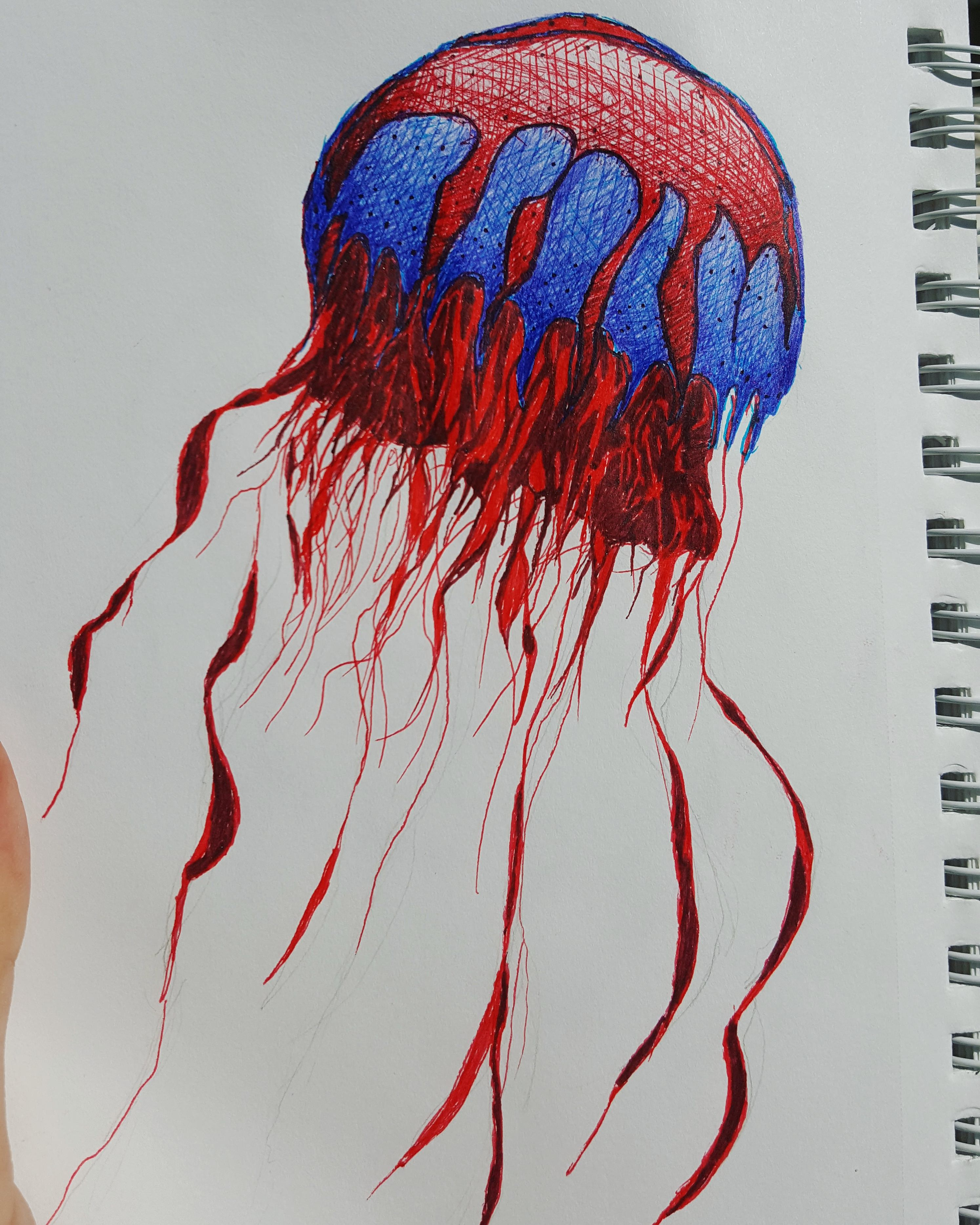 Jellyfish Drawing at GetDrawings.com | Free for personal use ...