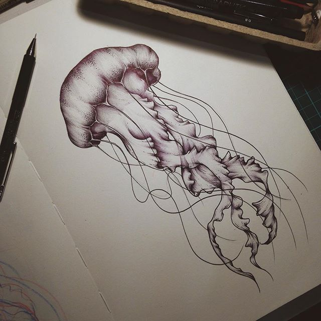 Jellyfish Tattoo Drawing At Getdrawings