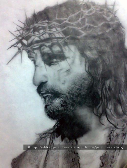 520x687 Pencil Sketch