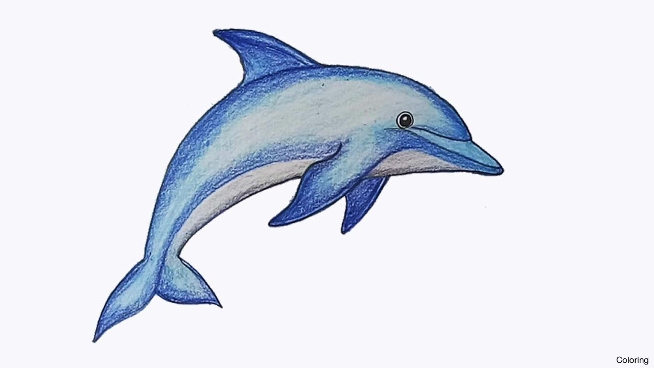 1280x720 Easy Drawing Of A Dolphin How To Draw Jumping Step Sea Animals