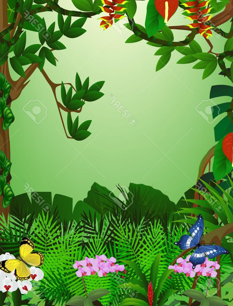 991x1300 Top 10 Forest Clipart Jungle Background Drawing