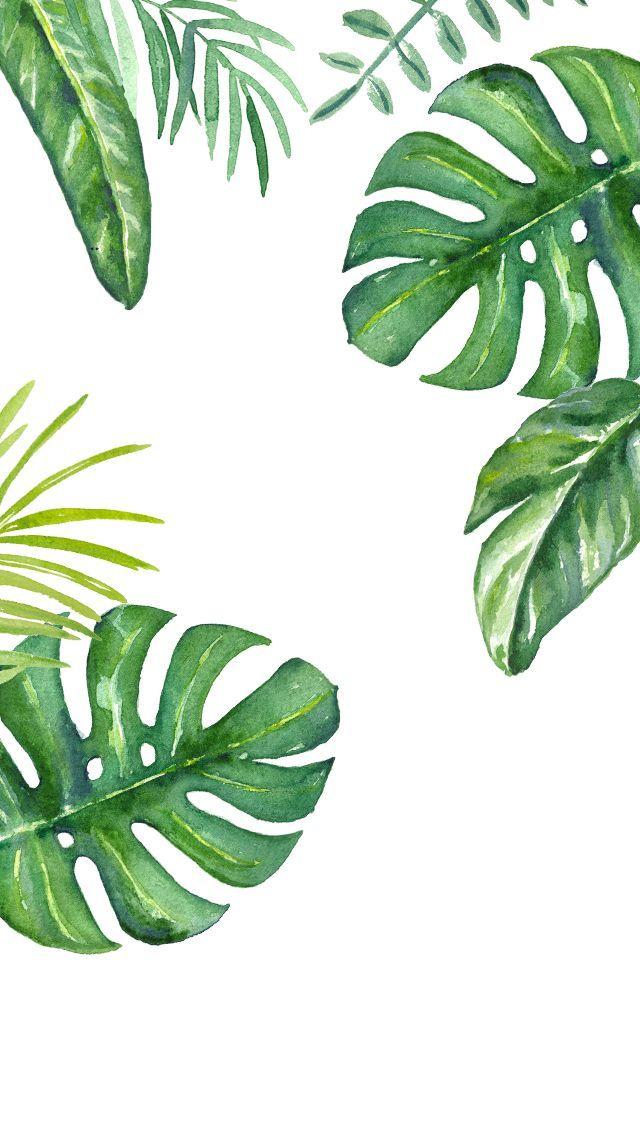 640x1136 Dlolleys Help Iphone 5s Jungle Leaves Wallpapers Flores En