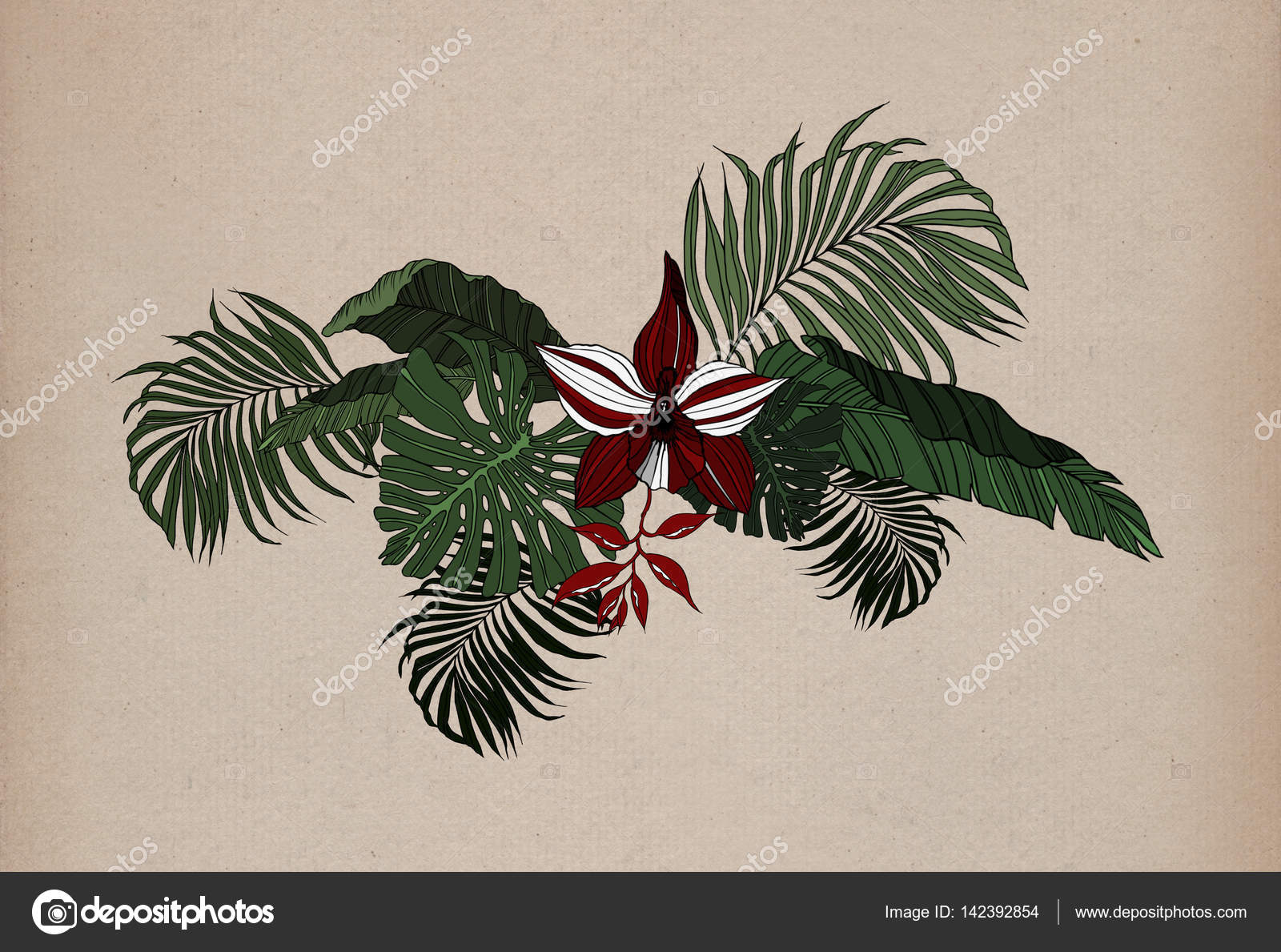 1600x1189 Jungle Leaves Drawing Pattern Stock Photo Piolka