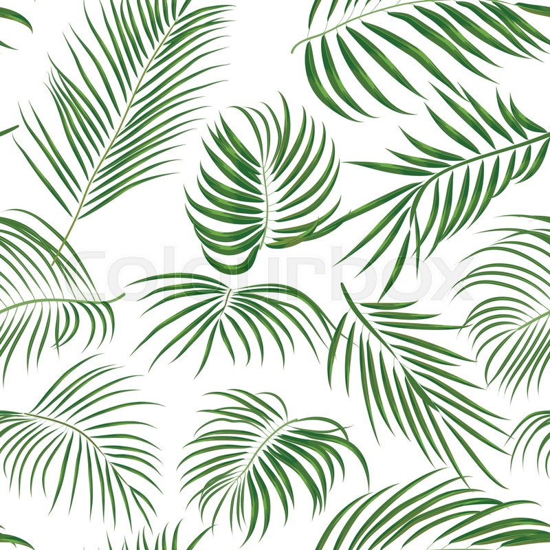 800x800 Seamless Hand Drawn Tropical Pattern With Palm Leaves, Jungle