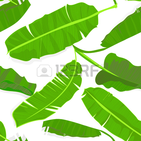450x450 Seamless Hand Drawn Tropical Pattern With Palm Banana Leaves