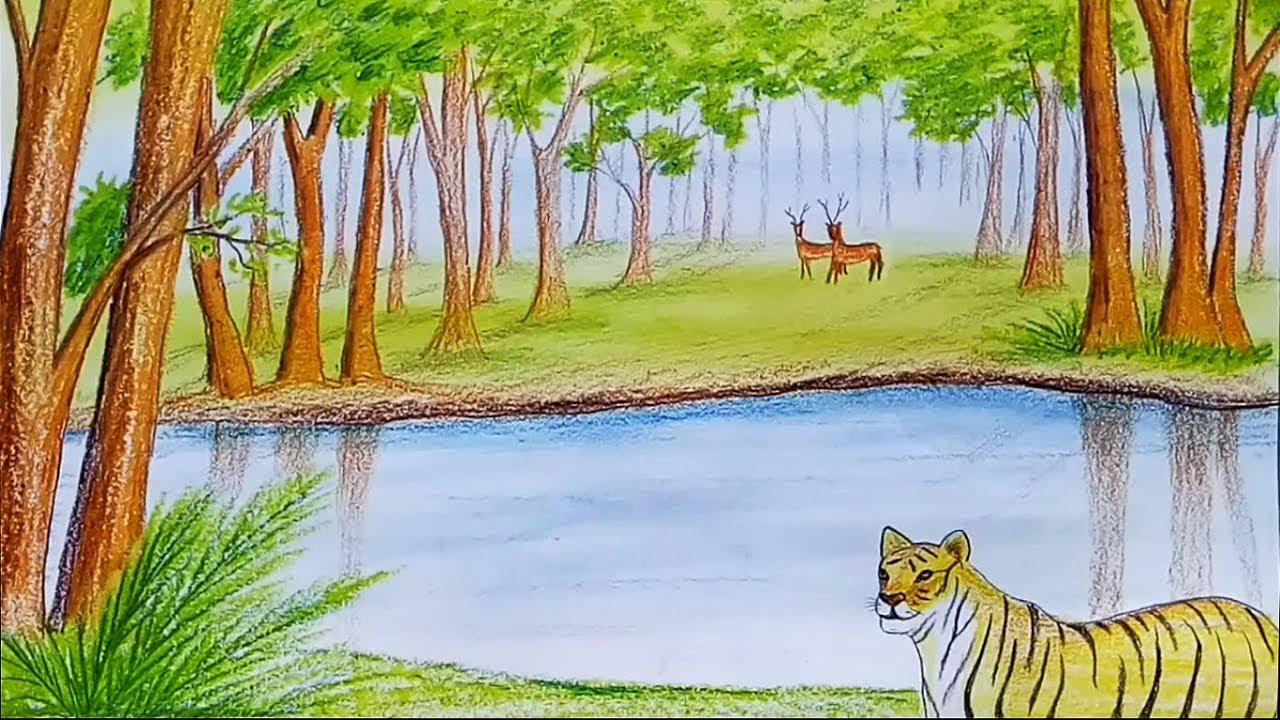 1280x720 Drawing Of A Forest Scene How To Draw Scenery Of Forest