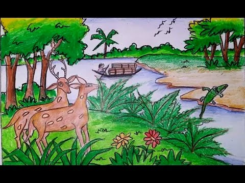 480x360 How To Draw A Scenery Of Sundarbans Forest Step By Step