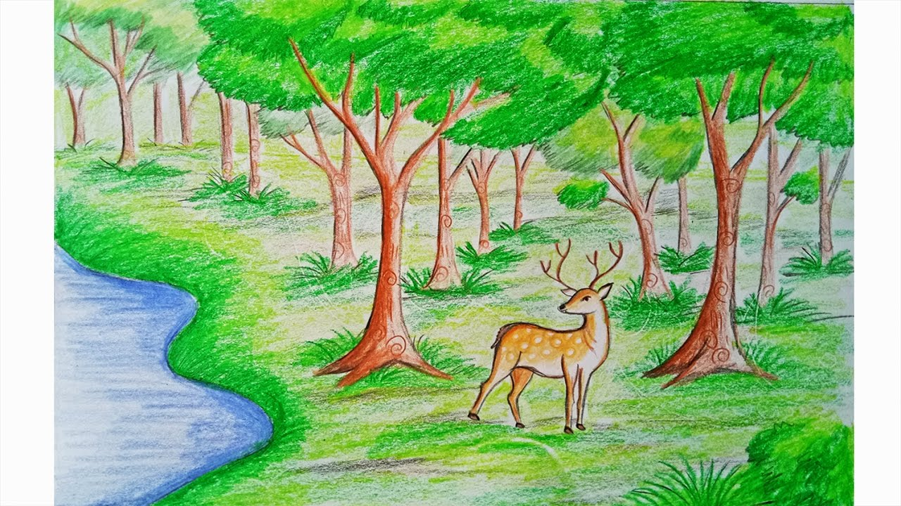 1280x720 How To Draw Forest Scene Step By Step (Very Easy)