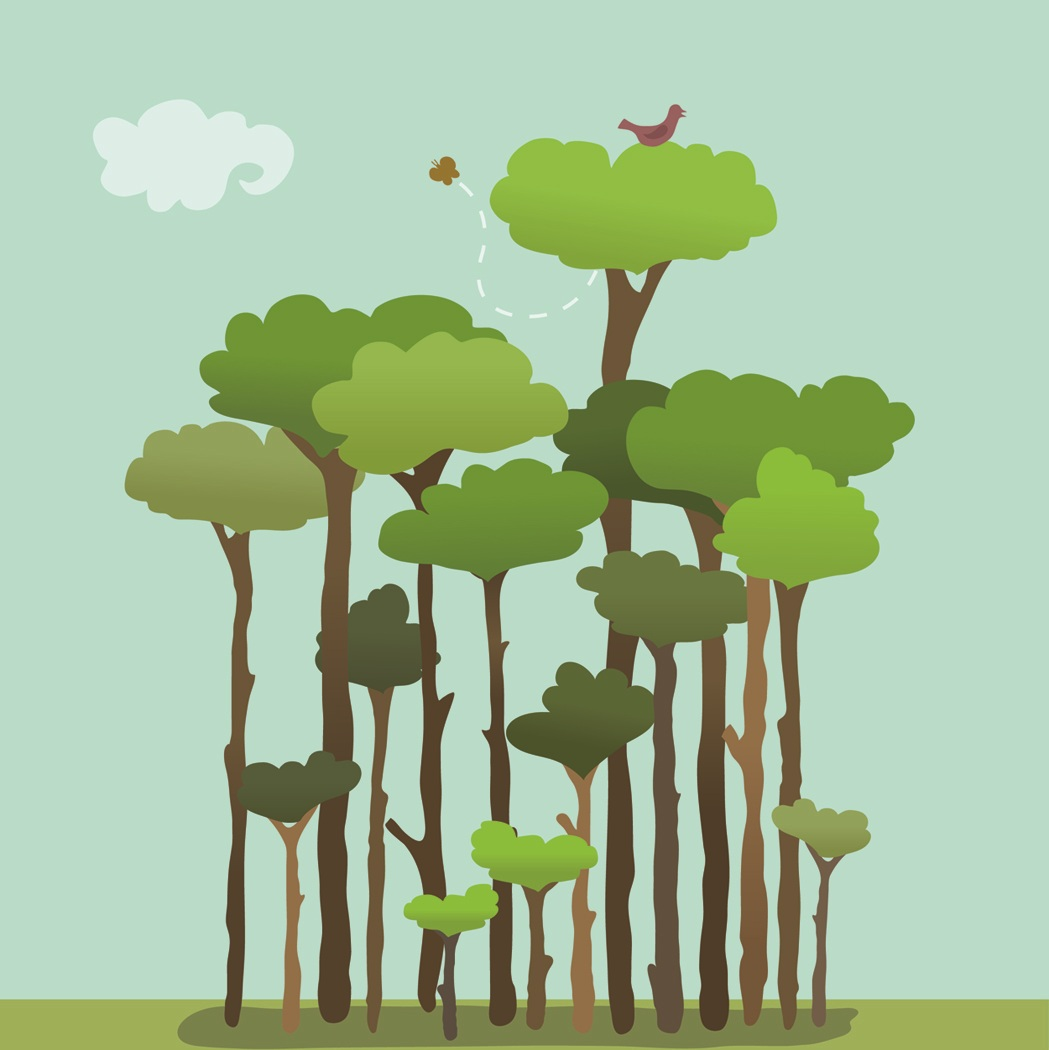 1049x1050 Jobsearchjungle Blog Archive The Trees Differentiation