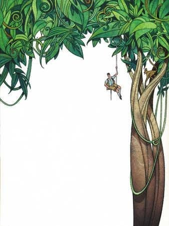 338x450 Jungle Trees Drawing Simple Living Tree In The World Places