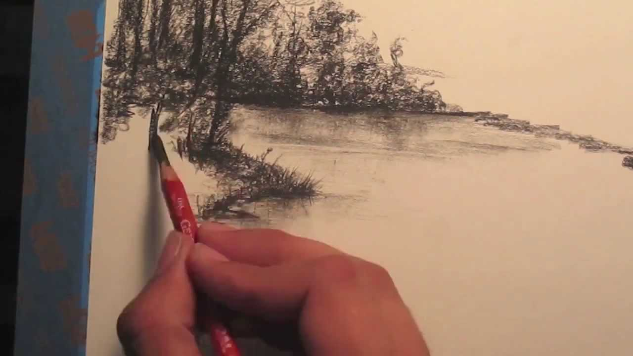 1280x720 How To Draw Rainforest Trees