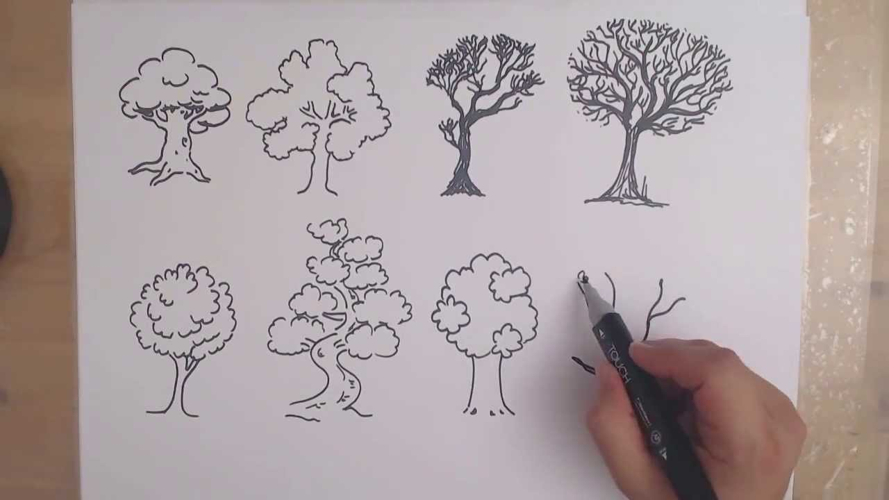1280x720 How To Draw A Tree