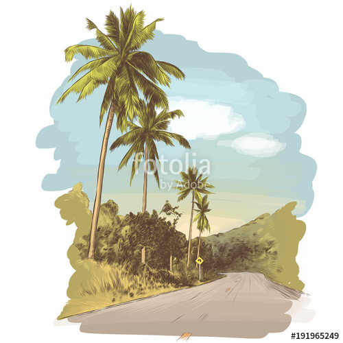 500x500 Road And Jungle With Palm Trees On The Edges, Sketch Vector