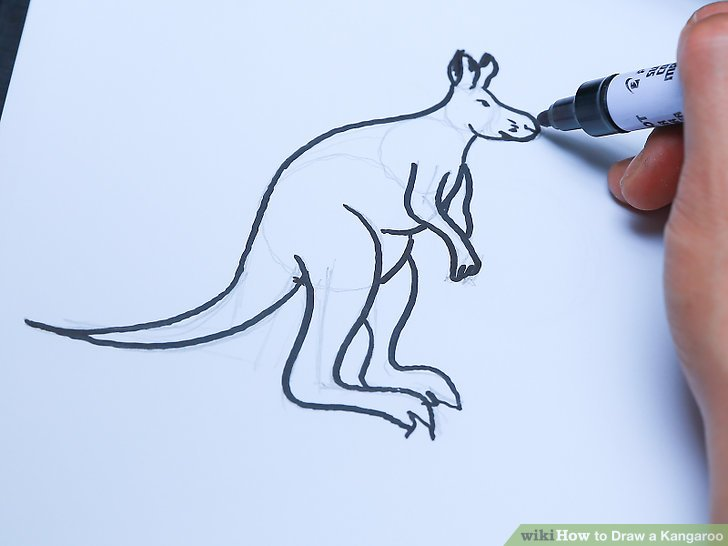 728x546 3 Ways To Draw A Kangaroo