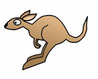 196x158 How Draw The Kangaroos Drawing Tutorials Amp Drawing Amp How