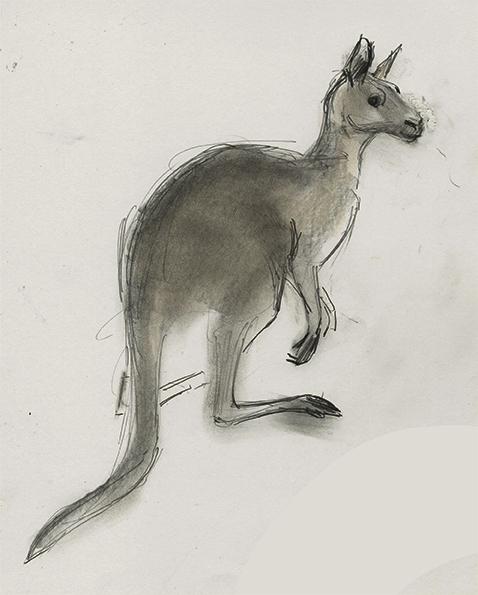 478x595 Kangaroo By Julian Williams Drawing And Illusion Beautiful