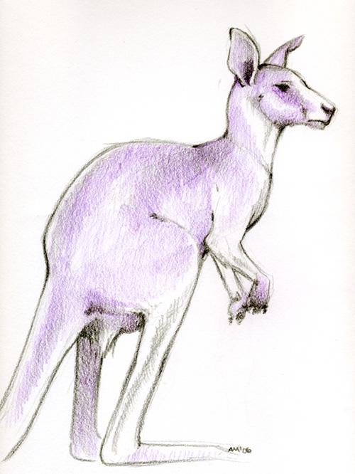 500x666 Purple Kangaroo By Kobayashi