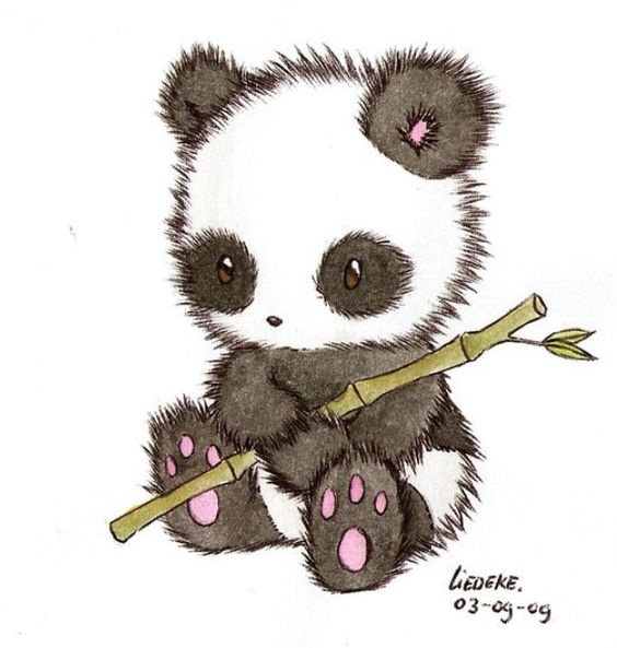 564x593 Image Result For Cute Kawaii Panda Journal Craft