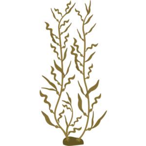 300x300 Kelp Drawing