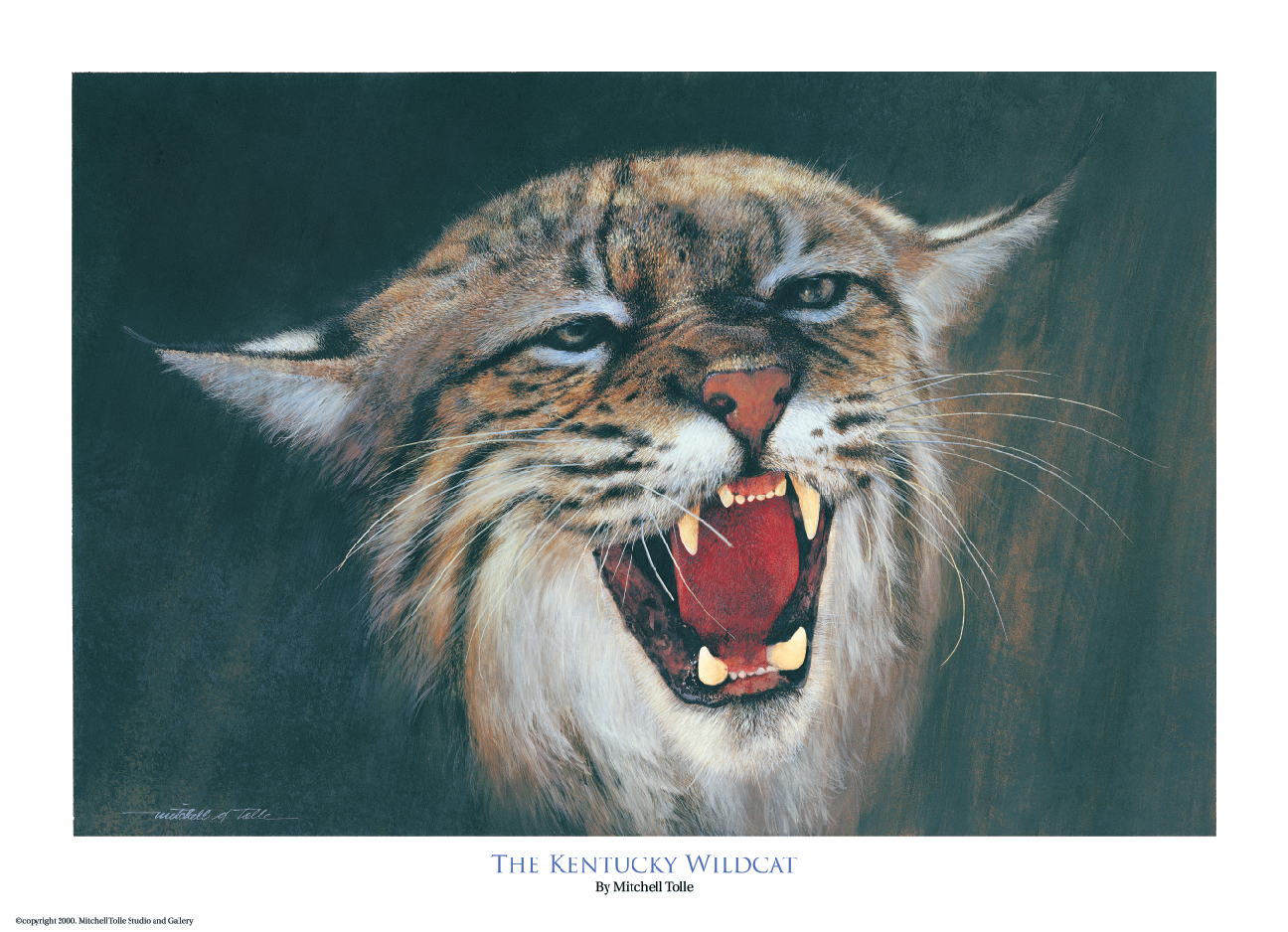 1296x938 The Kentucky Wildcat Signed Only Artist Mitchell Tolle