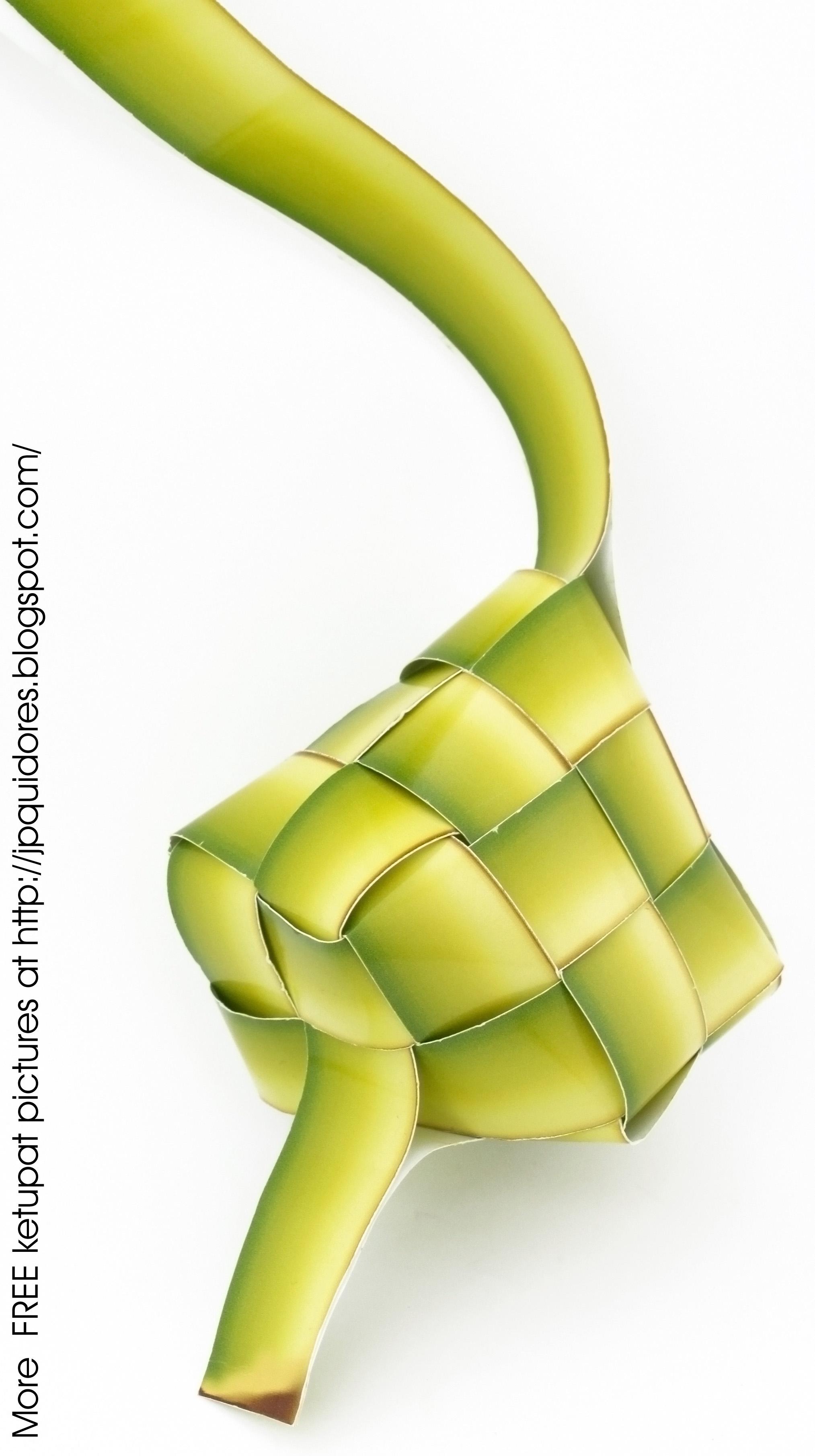 2027x3623 Filedrawing Of A Ketupat