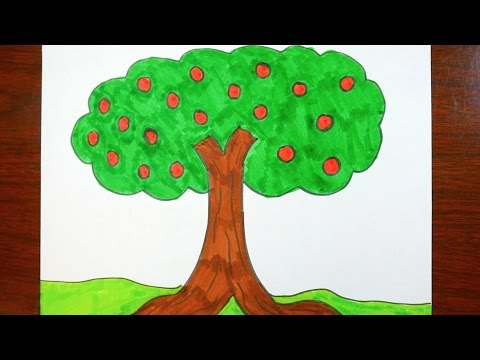 480x360 Drawing An Apple Tree Coloring Page For Kids