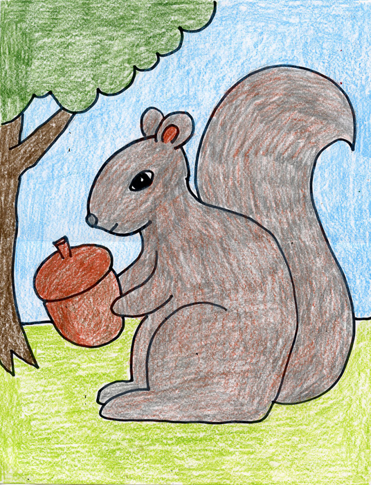 536x700 How To Draw A Squirrel