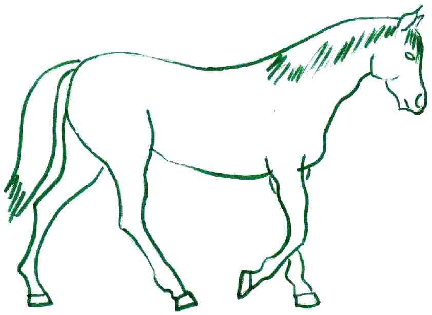 842x615 How To Draw A Horse For Kids How To Draw A Cute Horse From Letters