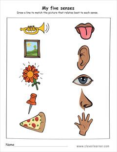 kindergarten drawing worksheets at free for personal use kindergarten drawing. Black Bedroom Furniture Sets. Home Design Ideas