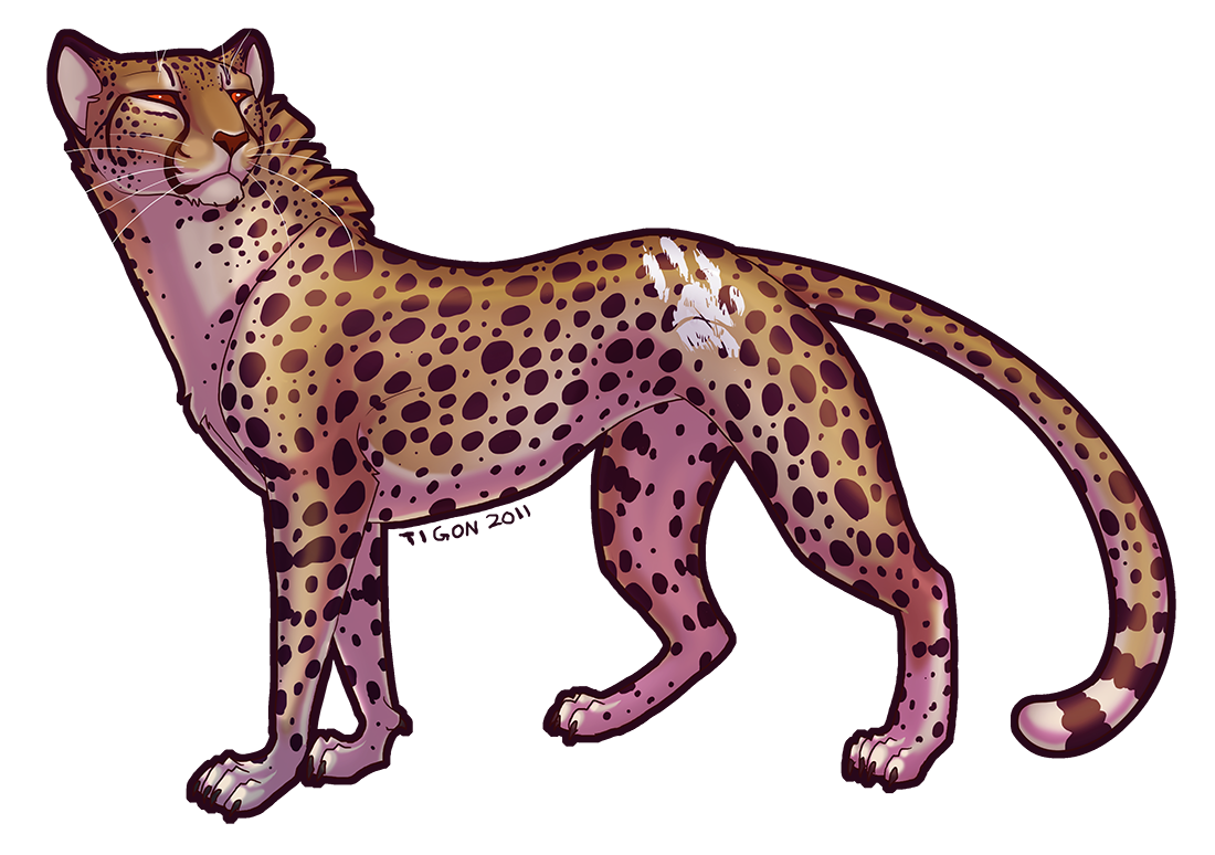 1100x774 A Cheetah By On @ Animal Art