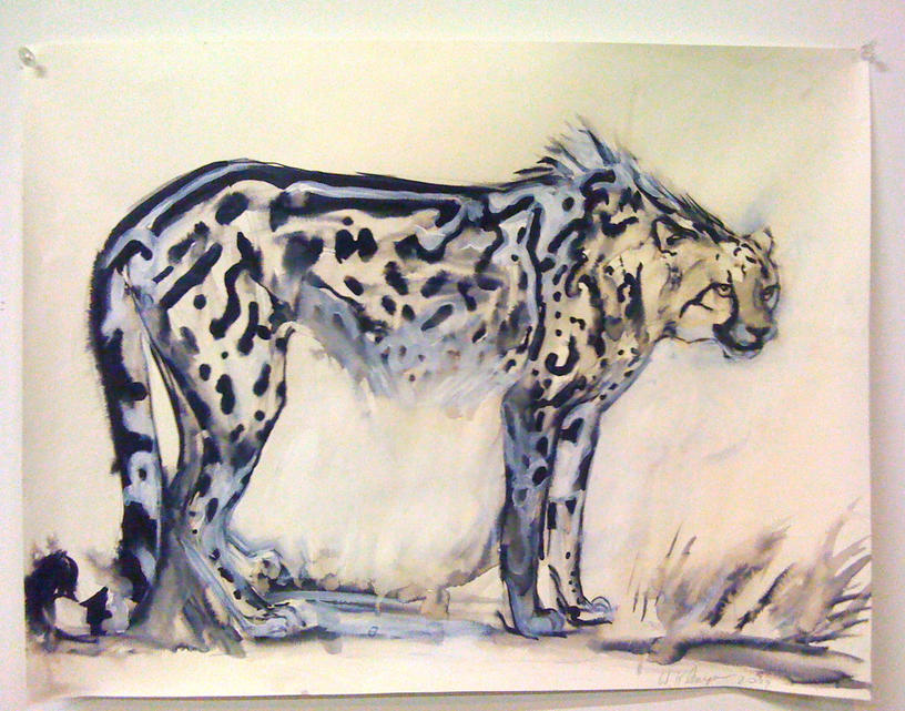 816x641 King Cheetah (Right), 2010, Ink On Paper, 18 X 24 Wendy Klemperer